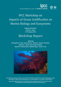 IPCC Ocean Acidification Workshop report